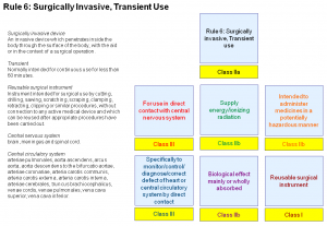Rule 6 - Surgically Invasive Transient Use